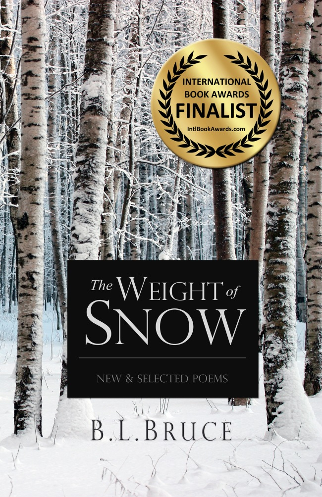 The Weight of Snow' Wins 3rd Award – 2014 USA Best Book